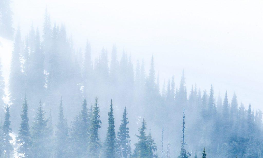 December holidays - Winter solstice